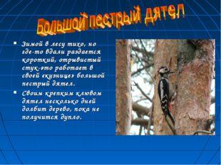 Зимой в лесу тихо, но где-то вдали раздается короткий, отрывистый стук-это ра