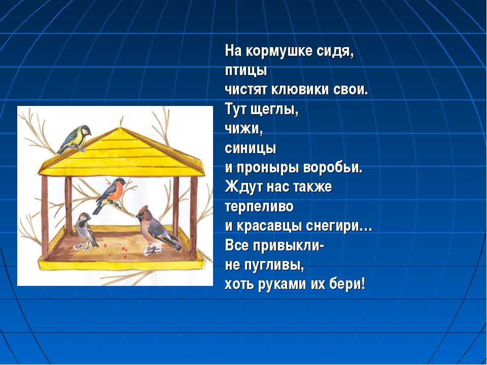 На кормушке сидя, птицы чистят клювики свои. Тут щеглы, чижи, синицы и проны...