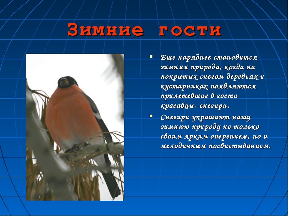 Зимние гости Еще наряднее становится зимняя природа, когда на покрытых снегом...