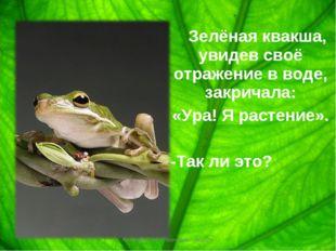 Зелёная квакша, увидев своё отражение в воде, закричала: «Ура! Я растение».