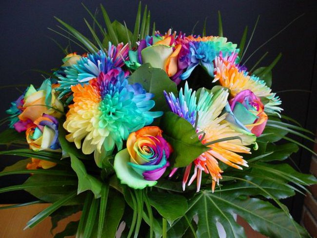 Цветы на 8 Марта: оригинальные окрашенные букеты