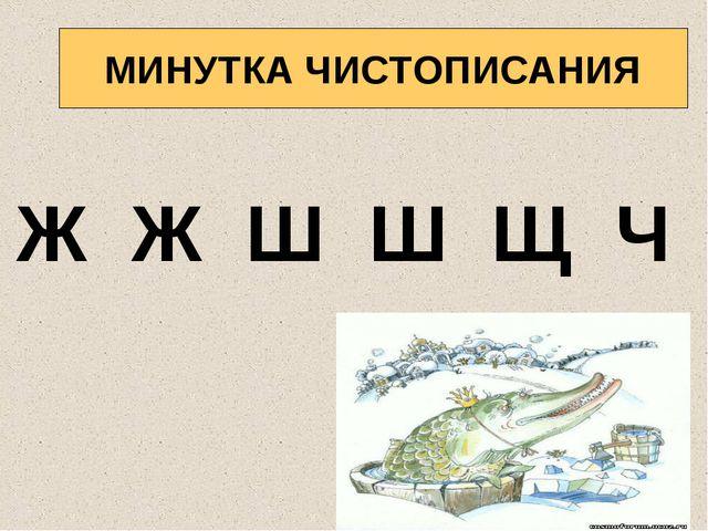 МИНУТКА ЧИСТОПИСАНИЯ Ж Ж Ш Ш Щ Ч