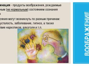 Галлюцинация - продукты воображения, рождаемые измененным (не нормальным) сос