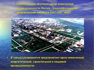 Новомосковск- крупный центр химической промышленности России. Градообразующим