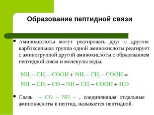 Образование пептидной связи NH2 – CH2 – COOH + NH2 – CH2 – COOH = NH2 – CH2 –