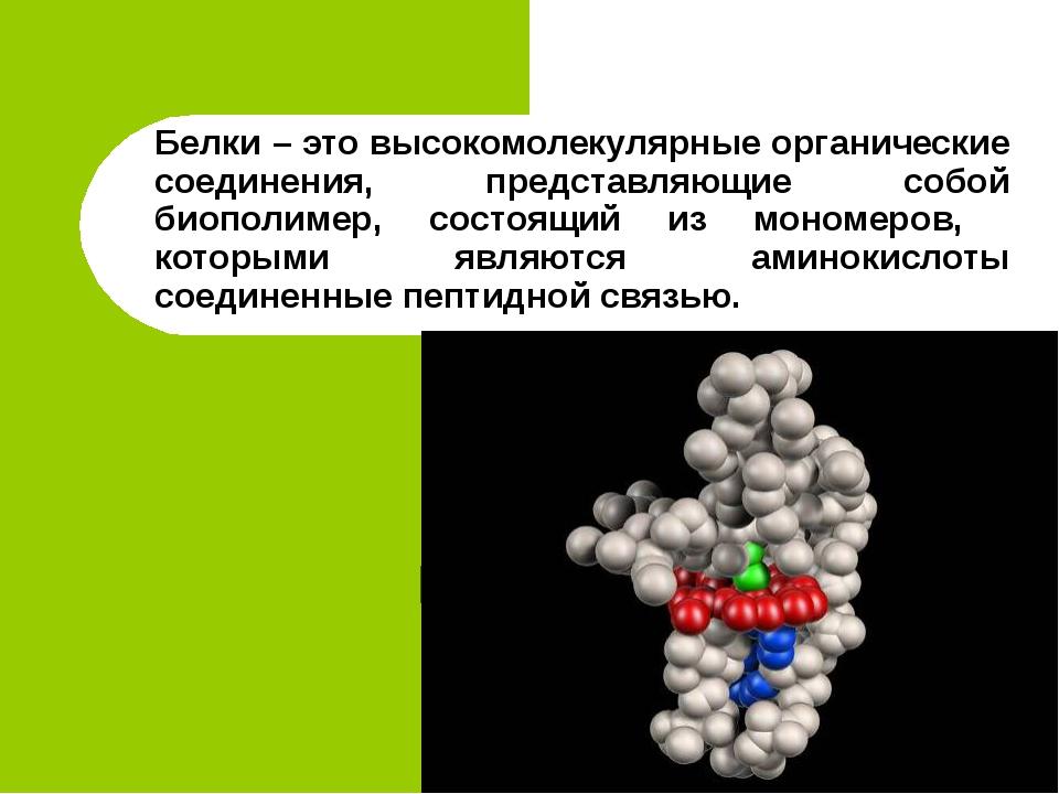 Белки – это высокомолекулярные органические соединения, представляющие собой...