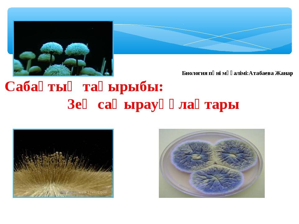 Биология пәні мұғалімі:Атабаева Жанар Сабақтың тақырыбы: Зең саңырауқұлақтары