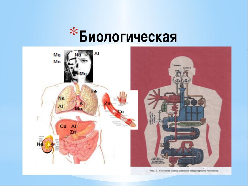 Биологическая