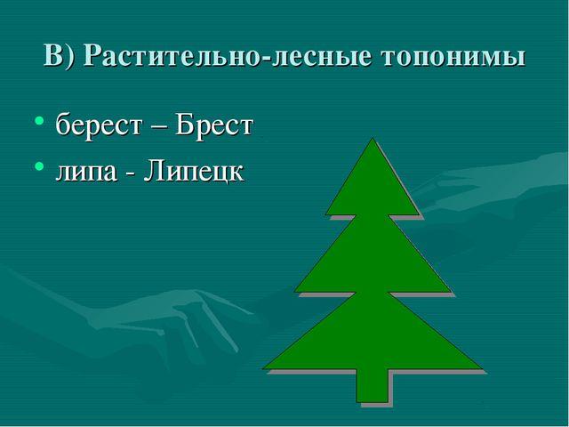 В) Растительно-лесные топонимы берест – Брест липа - Липецк