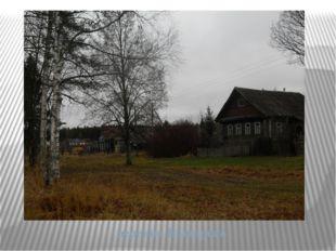 деревня Башарово