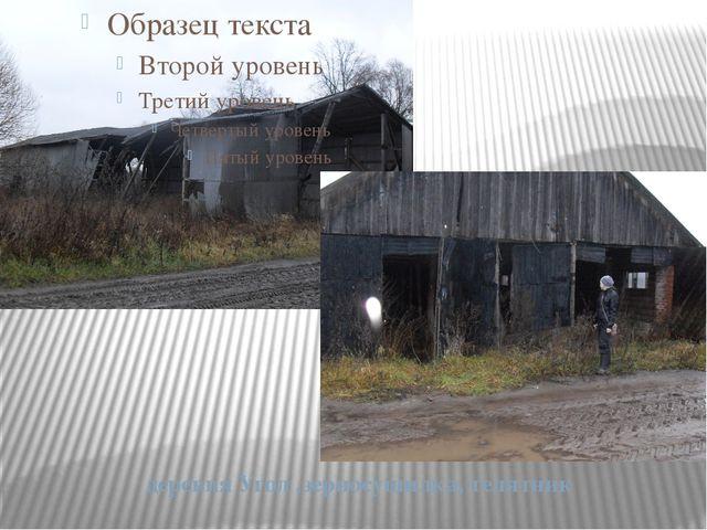 деревня Угол ,зерносушилка, телятник
