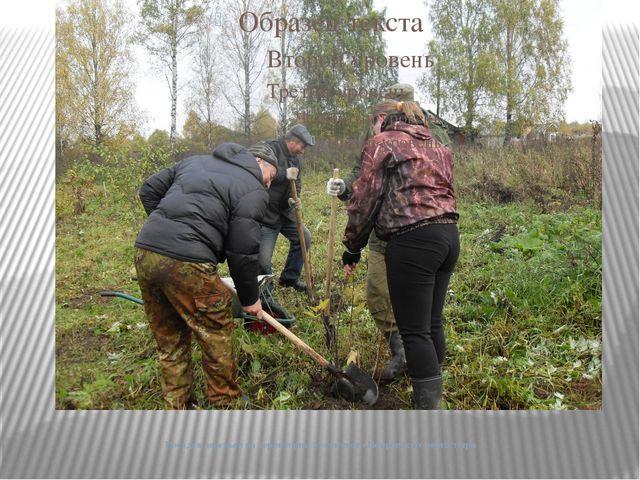 Посадка деревьев на территории Мологского Покровского монастыря