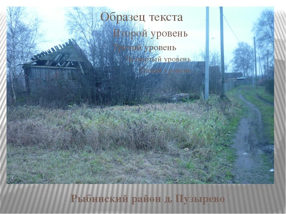 Рыбинский район д. Пузырево