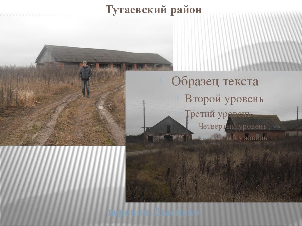 Тутаевский район деревня Лысцево