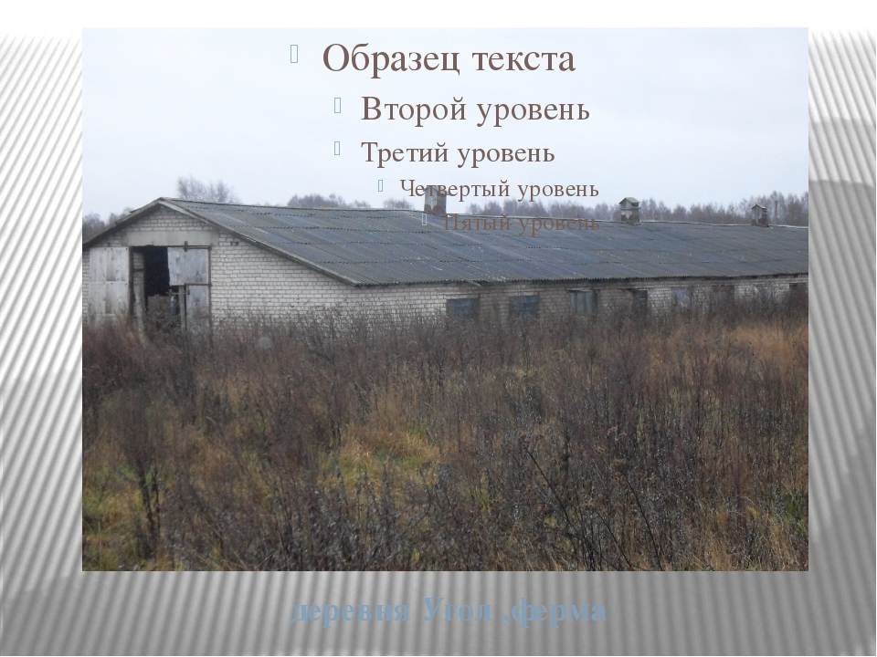 деревня Угол ,ферма
