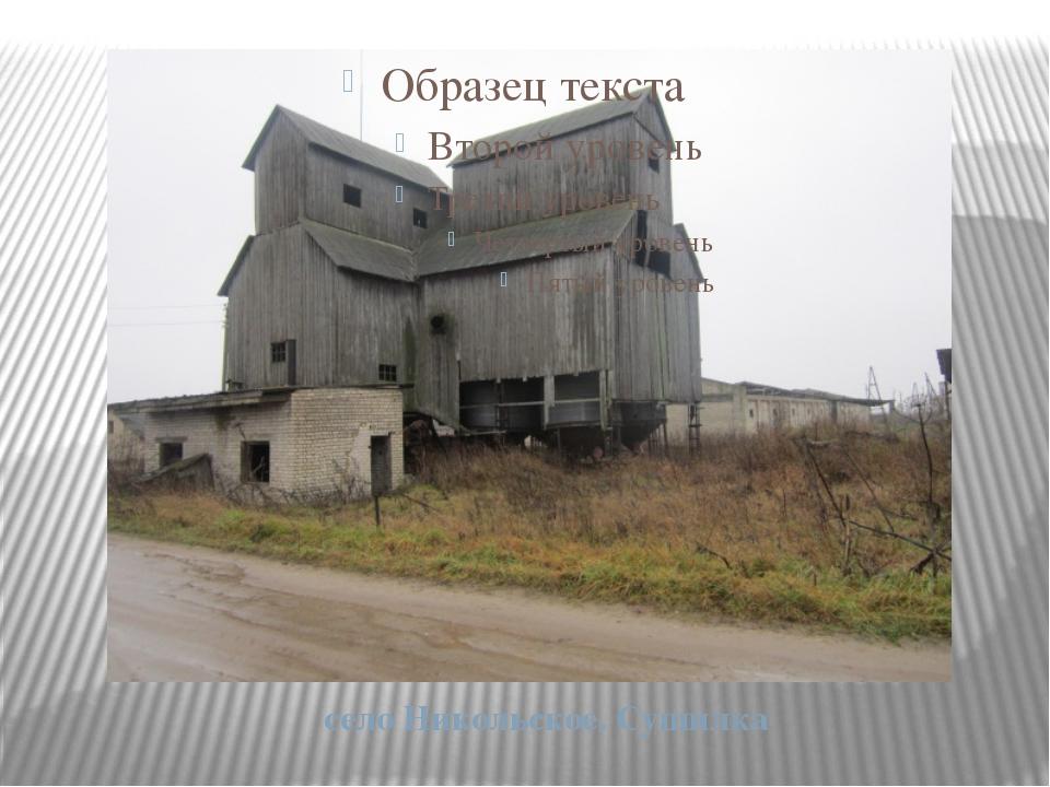 село Никольское. Сушилка