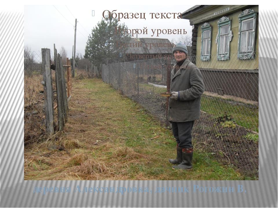 деревня Александровка, дачник Рогожин В.