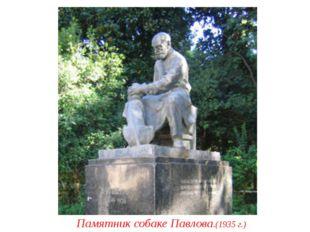 Памятник собаке Павлова.(1935 г.)