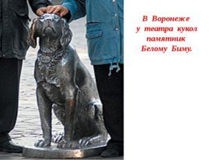 В Воронеже у театра кукол памятник Белому Биму.