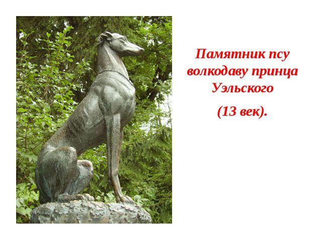Памятник псу волкодаву принца Уэльского (13 век).