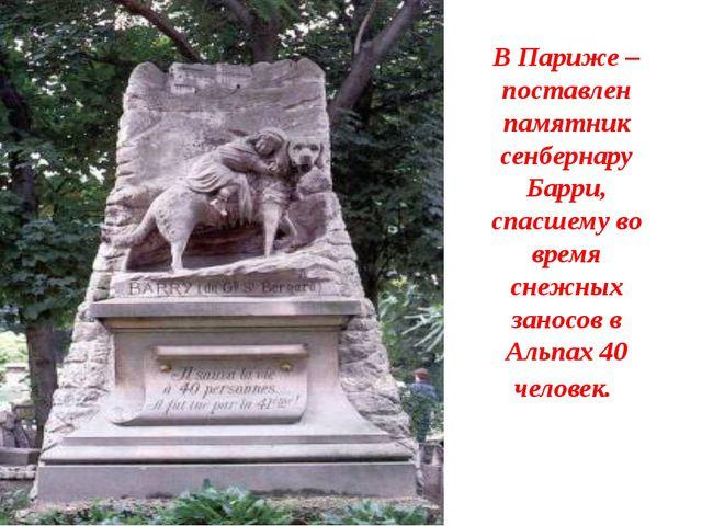 В Париже – поставлен памятник сенбернару Барри, спасшему во время снежных зан...