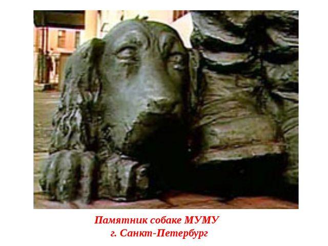 Памятник собаке МУМУ г. Санкт-Петербург