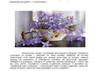 Издавна на Руси раздавался колокольный звон — призывный и торжественный, рад