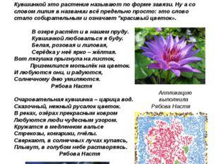 Кувшинкой это растение называют по форме завязи. Ну а со словом лилия в назва