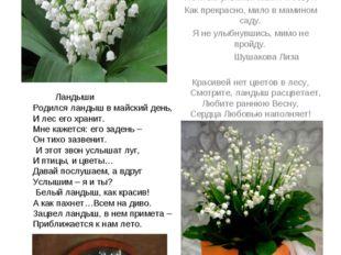 Ландыш - возвращение счастья . Лилия долин, цветущая в мае – ландыши. Ран