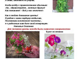 Подарить цветы - значит выразить человеку свои искренние чувства любви, почте