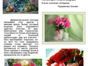 Люди дарят цветы, потому что в цветах заложен настоящий смысл Любви.  Цвето