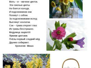 Первоцветы. Увидев первые цветы, мы радуемся, восхищаемся, любуемся Первоцвет