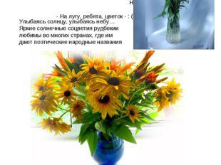 На хороший цветок летит мотылек. Цветы, что дети, уход любят. Золотая середин