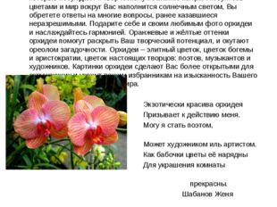 Орхидеи пробуждают творческий потенциал и призывают к действию. Загадочные и