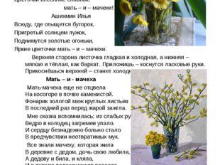 Мать – и – мачеха – добрая мать Пришла весна, весна – красна! И смех и радост
