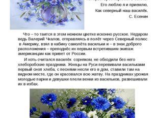 Вв Вася - василёк Я только тот люблю цветок Который врос корнями в землю. Его