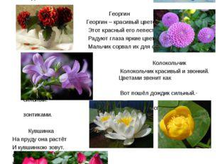 Страница Суслопарова Романа Цветы ласкают наши глаза, смягчают нравы. Василё