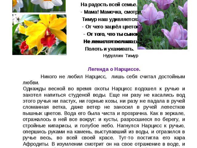 Нн Символ цветка Нарцисс- самовлюблённость У мамочки на грядке Нарциссы расцв...