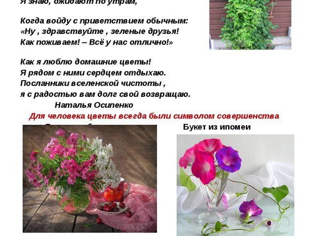 Подарить цветы - значит выразить человеку свои искренние чувства любви, почте...