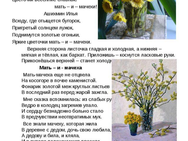 Мать – и – мачеха – добрая мать Пришла весна, весна – красна! И смех и радост...