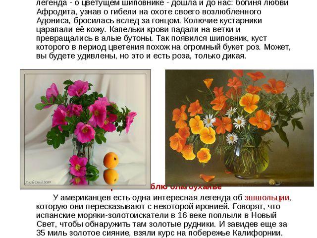 Шиповник – дикая роза Во дни роскошного расцвета, Когда приходит жар и зной,...