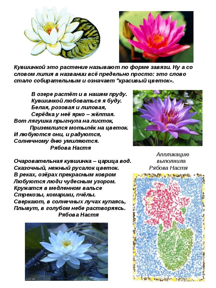 Кувшинкой это растение называют по форме завязи. Ну а со словом лилия в назва...