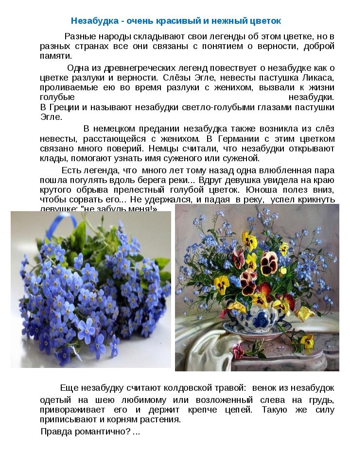 Незабудка - очень красивый и нежный цветок Разные народы складывают свои леге...