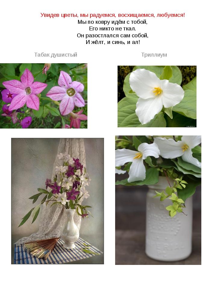 Увидев цветы, мы радуемся, восхищаемся, любуемся! Мы по ковру идём с тобой, Е...