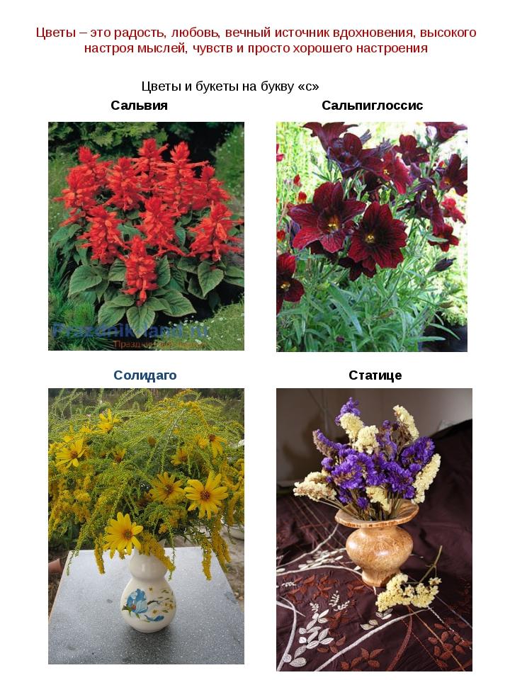 Цветы – это радость, любовь, вечный источник вдохновения, высокого настроя мы...