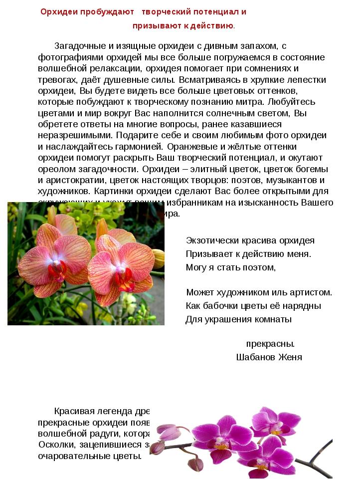 Орхидеи пробуждают творческий потенциал и призывают к действию. Загадочные и...