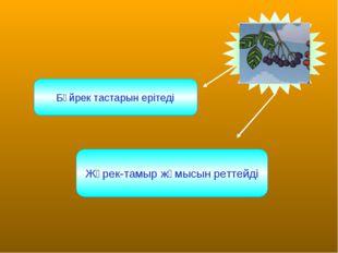Бүйрек тастарын ерітеді Жүрек-тамыр жұмысын реттейді