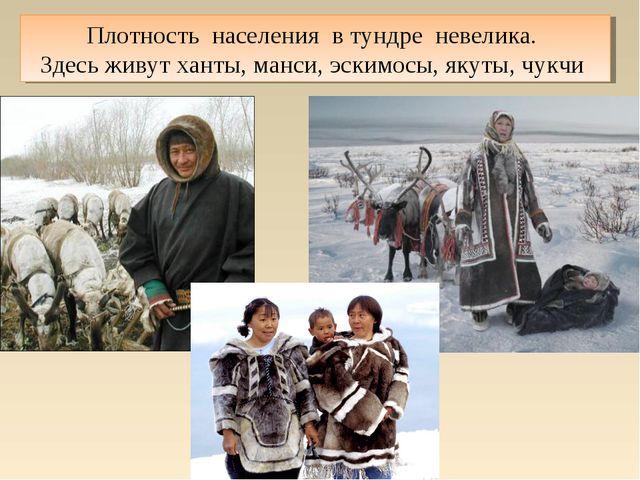 Плотность населения в тундре невелика. Здесь живут ханты, манси, эскимосы, як...