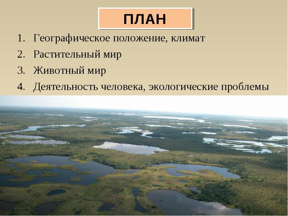Географическое положение, климат Растительный мир Животный мир Деятельность ч...