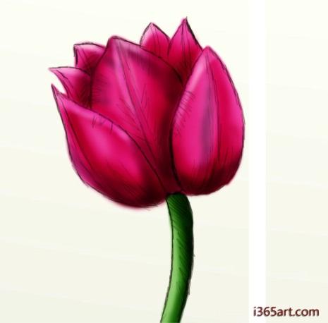 http://www.sinn-ess-theater.de/wordpress/wp-admin/network/drawings-of-flowers-i8.jpg